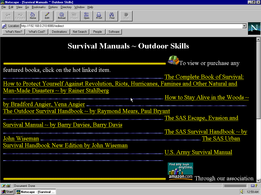 Windows 95 OSR2 x86 with Netscape Navigator 3.0 Gold displaying a page from Angelfire archived at April 07, 2000 at 20:41:31